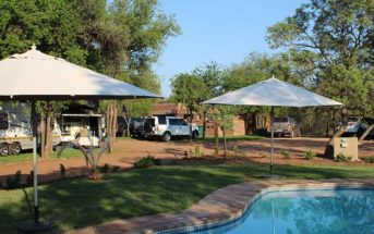 a-vacation-oasis-tshikwalo-lodge-dinokeng-game-reserve