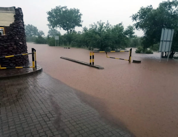 Heavy rain forces road closures in Kruger National Park.
