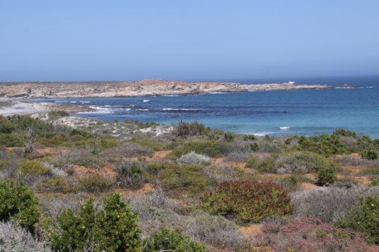 Hanli van der Walt camping by the coast