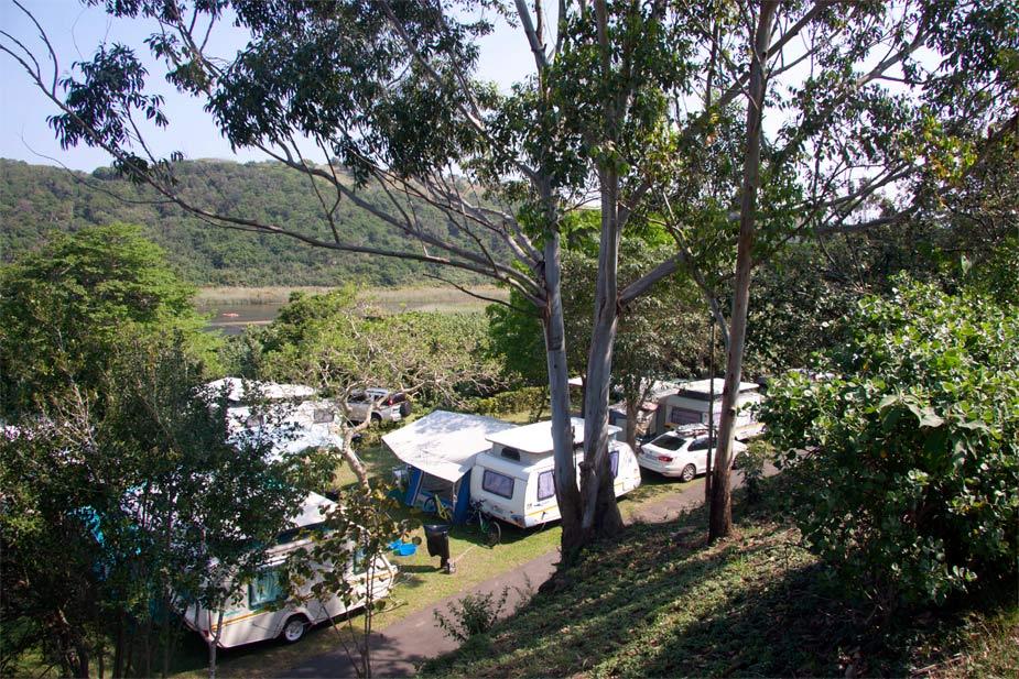 Mac Nicol's Caravan Park - Fish Eagle